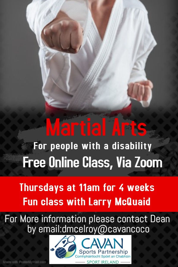 Inclusive Online Martial Arts